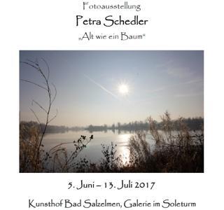 Ausstellung Petra Schedler vom 5.6. bis 13.7.2017